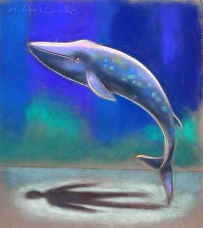 Mój brat wieloryb