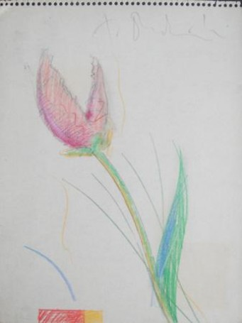 Geometria kwiatów III