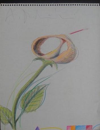 Geometria kwiatów IV