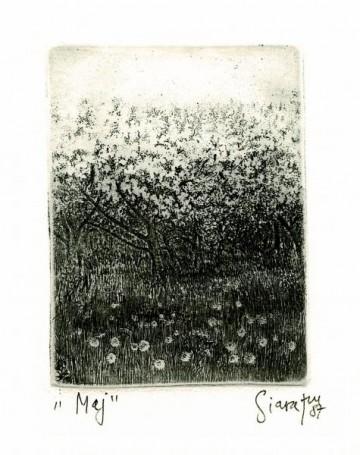 Maj, 1987 r., zcyklu