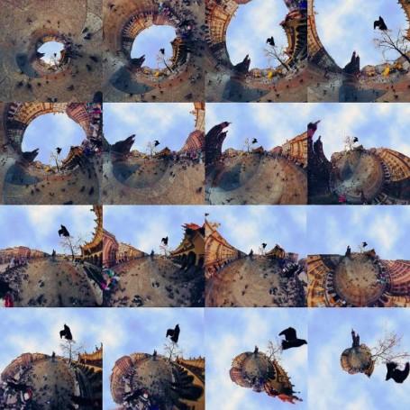 Bird Grid 16 Master, 2012