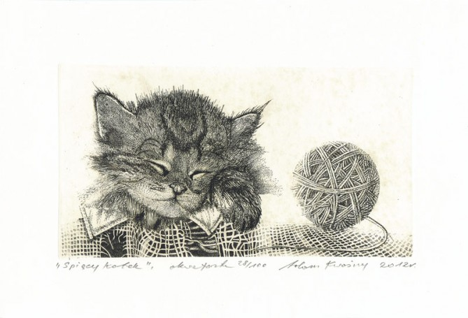 Sleepy kitten, 2012