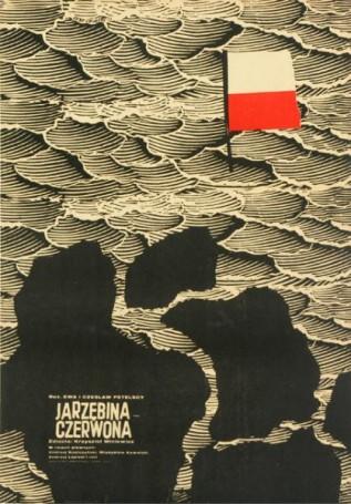 Jarzębina czerwona, 1969 r.