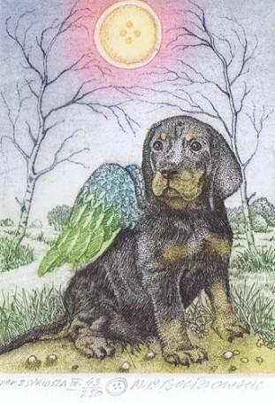 Angel from Sirius