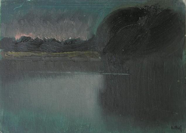 Rzeka Bug, 2014