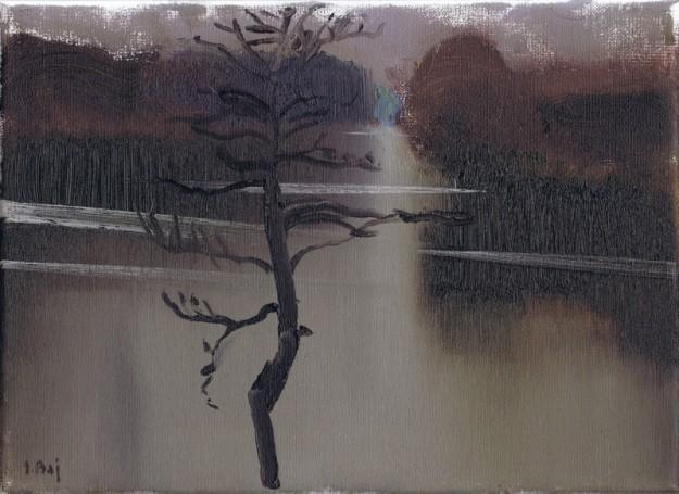 Rzeka Bug, 2016 r.