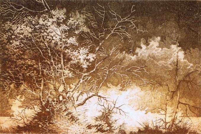 Landscape XXXVIII, 2000