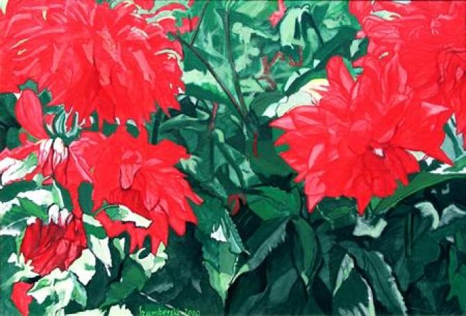 Dahlias in the shade, 2000