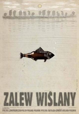Zalew Wiślany, 2016 r.