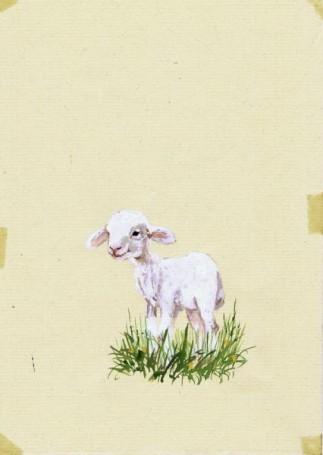 """""""A to co?"""", ilustracja do książki (Owieczka)"""