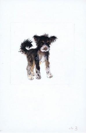 """""""Kundel"""", ilustracja do książki Wandy Chotomskiej"""