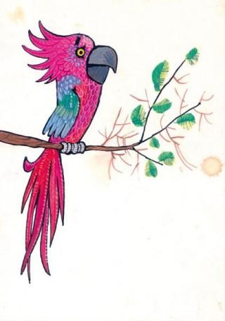 """Papuga, """"Zwierzęta Pana Brzechwy"""", ilustracja do książki Jana Brzechwy"""