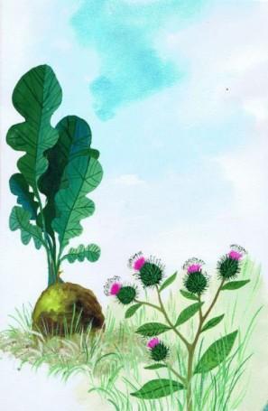 Rzep irzepa, ilustracja do książki