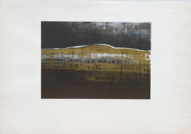 Spalony las, 1995 r.