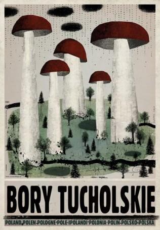 Bory Tucholskie, zserii