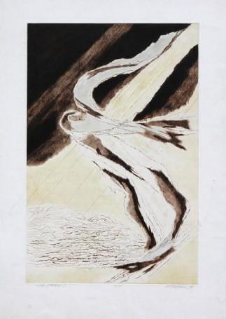 Edmund Piotrowicz, Loty ptaków I