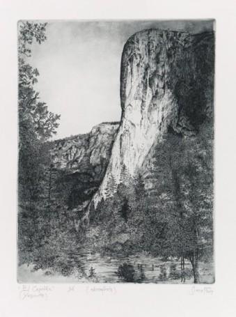 El Capitan (Yosemite), 2019