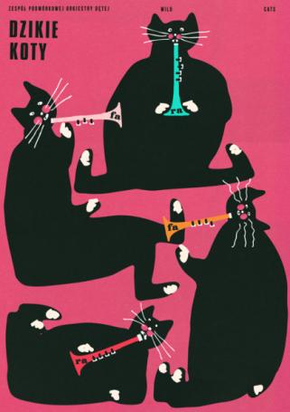 Wild Cats, Jakub Zasada