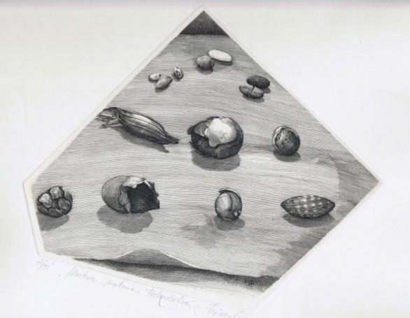 Martwa natura toskańska, 2003 r.