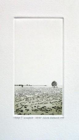 Nastroje III, 2004 r.