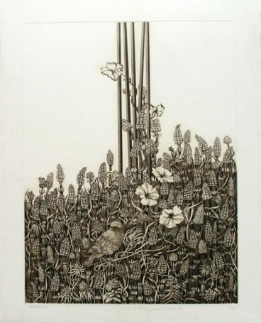 Bottlebrushes, 1983