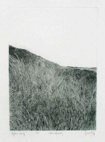 Wysokie trawy, 1976 r.