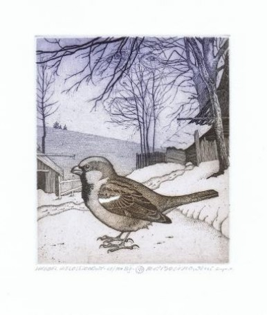 Multi-Seasonal sparrow