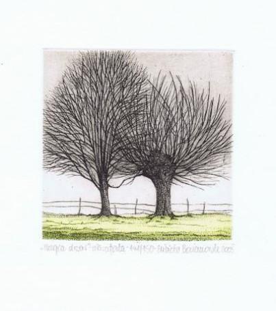 Magia drzew, 2008 r.