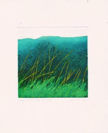 Trawki, 2000 r.