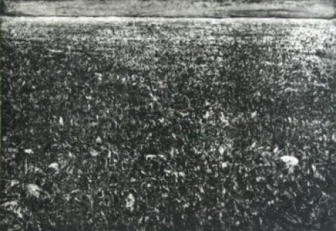 Step, 1984 r.