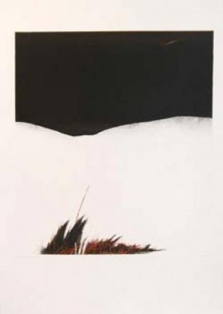 Grass, 1985