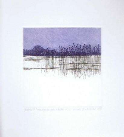Jezioro IV, 1992 r.