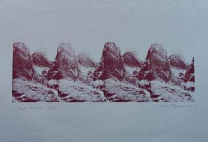 Wąwóz Homole, 1974/92