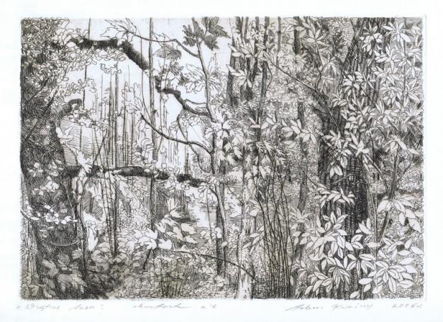 Wnętrze lasu- szkic, 2006 r.