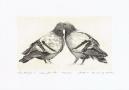 Pigeons, 2012