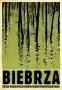 Biebrza from