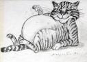 Kot czarno -biały, 1999 r.