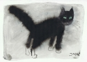 Jozef Wilkon, Cat