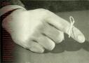 Refleksy. Sztuka zWiednia, 1991 r.