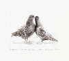 Adam Kwaśny, Pigeons, 2015