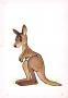 Kangaroo, illustration for Jan Brzechwa book 'Zwierzeta Pana Brzechwy'