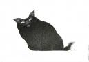 Bez tytułu (Kot)