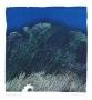 Andrzej Pietsch, Blue landscape, 1995