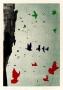 Gołębie nad sukiennicami