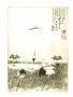 Tsuru (List zJaponii V), 2010 r.